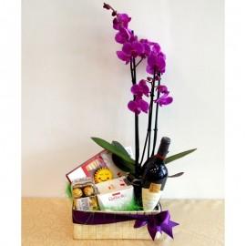 Aranjament orhidee phalaenopsis, dulciuri si sticla de vin