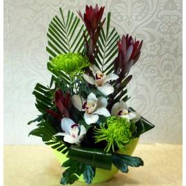 Aranjament exotic cu orhidee alba