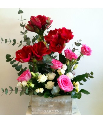 Aranjament in cutie cu amaryllis, frezii si trandafiri