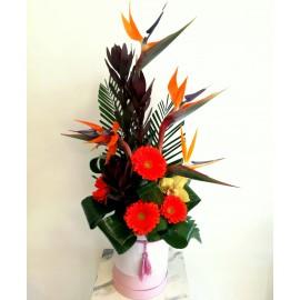 Aranjament ikebana in cutie cu flori exotice - 13 flori