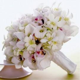 Vremea orhideelor