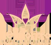 101flori.ro, florarie online si offline