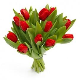 11 lalele rosii cu panglica