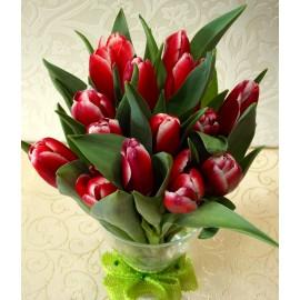 Buchet 25 lalele rosii in vaza