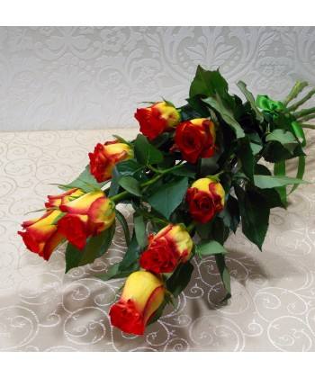 Buchet lung din 9 trandafiri bicolori cu funda din satin
