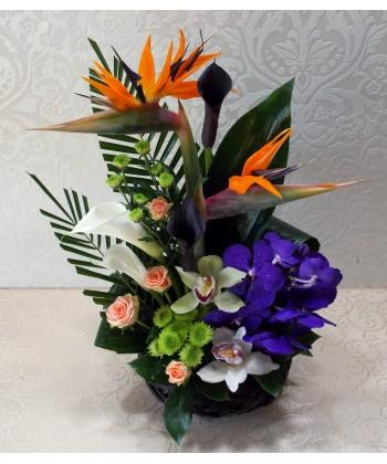 Aranjament cu strelitzia, cale, trandafiri, crizanteme si orhidee