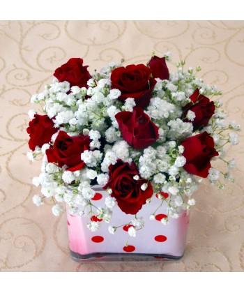 Aranjament 9 trandafiri rosii si gypsophilla