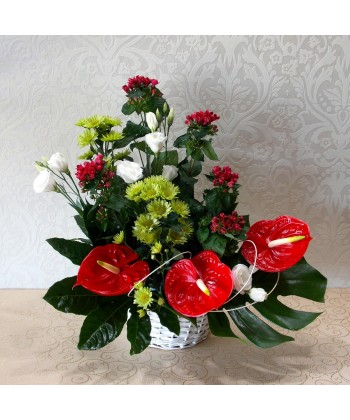 Aranjament semi exotic cu eustoma, crizanteme si anthurium