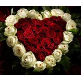 30 trandafiri rosii si 17 trandafiri albi in aranjament tip inima
