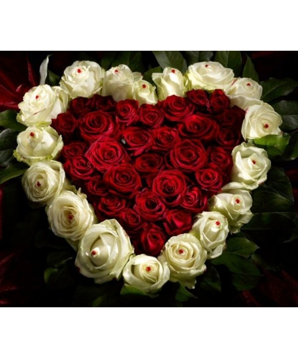 Aranjament Tip Inima 30 Trandafiri Rosii Si 17 Trandafiri Albi