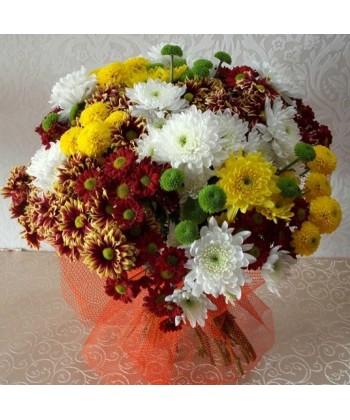 Buchet 29 crizanteme multicolore