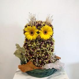 Aranjament floral in forma de bufnita in cosulet