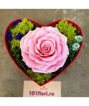 Trandafir roz criogenat in cutie cadou pentru ea