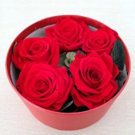 Cutie 5 trandafiri criogenati rosii, dragoste vesnica