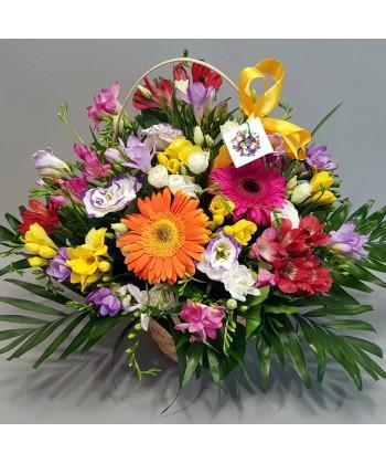 Aranjament flori colorate in cos cu 29 frezii