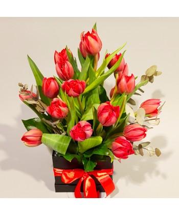 23 lalele rosii in cutie si funda din satin