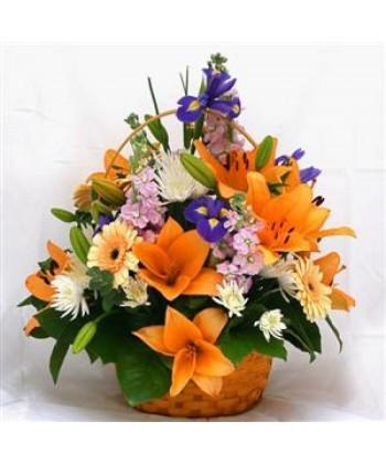 Aranjament in cos cu gerbera, crizantema, crin asiatic, iris