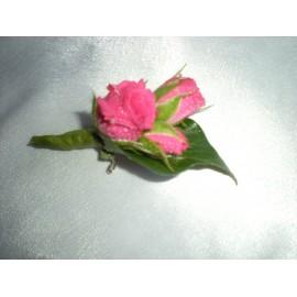 Cocarda din mini-rosa